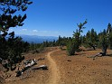 Good trail, great views, and pumice to ride on